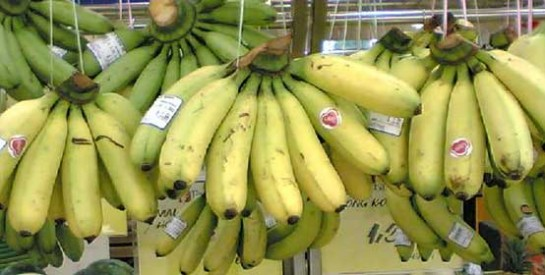 Les utilisations alternatives de la banane
