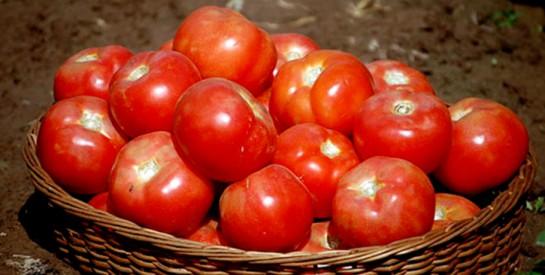 Voici comment conserver certains légumes plus longtemps