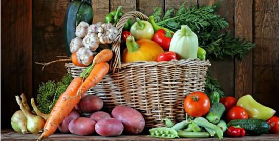 Quels bienfaits et quelle importance des antioxydants pour notre organisme?