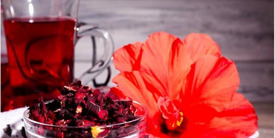 L'huile d'Hibiscus : nourrissante et régénérante pour la peau