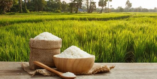 Voilà pourquoi il faut rincer le riz avant de le cuire
