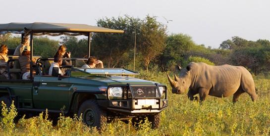 Les parcs nationaux rouverts ce lundi aux touristes en Afrique du Sud