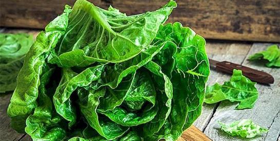 Comment bien laver une salade verte sans produit chimique?