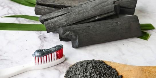 Le charbon végétal, cet actif naturel puissant pour l'organisme