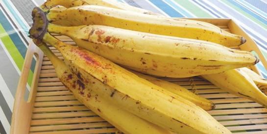 Voici comment bien conserver la banane plantain