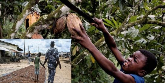 En Côte d'Ivoire, la difficile lutte contre le travail des enfants dans le cacao