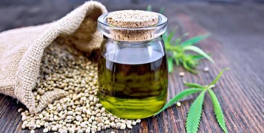 Pellicules, cheveux fins, cassants, secs: l'huile de chanvre à la rescousse