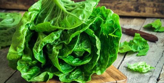 3 astuces pour conserver sa salade toujours fraîche