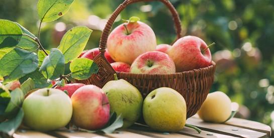 Voici 5 aliments riches en antioxydants