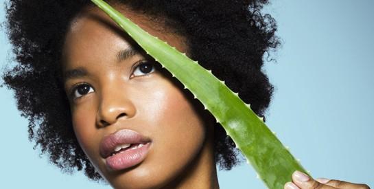 Soins de la peau : l'aloe vera, ingrédient le plus populaire au monde