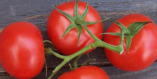 L'effet de la tomate sur le cholestérol
