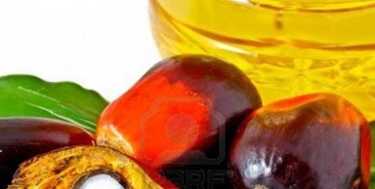 L'huile de palme, un réel danger pour nos enfants ?